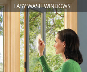 Easy Wash Windows